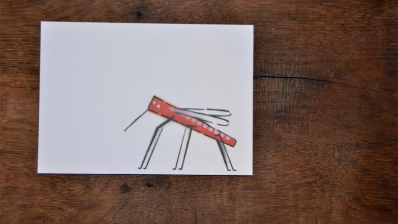 cartes bestioles